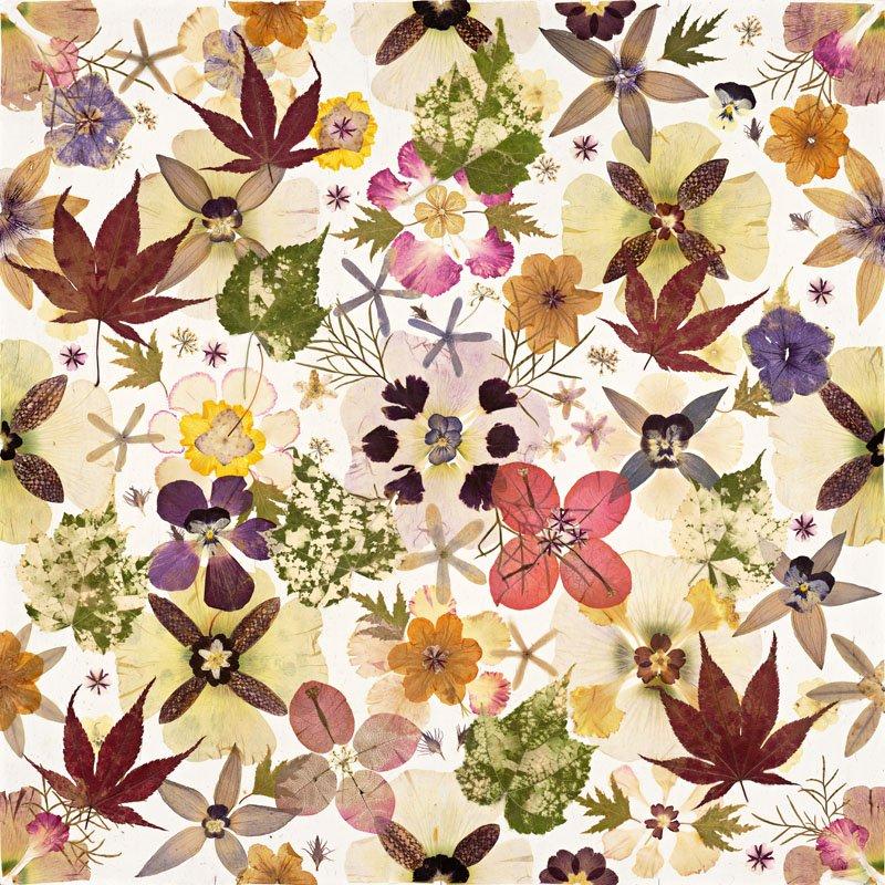 Дизайнерский ковер в весенних тонах Гербарий от шведского дизайнера Гуниллы Ульберг