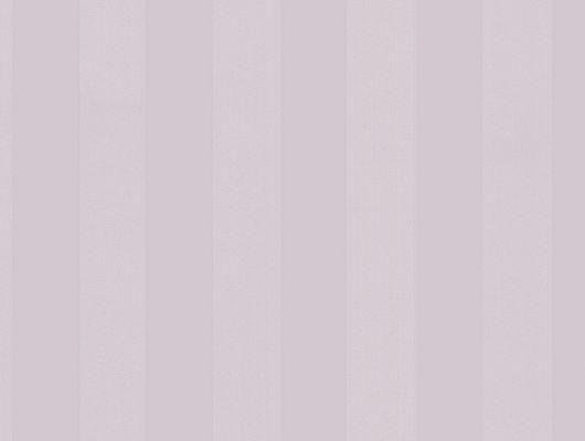 Виниловые обои на бумажной основе напечатаны методом горячего тиснения. Обои металлизированы и имитируют шелковое сияние. Арт.№ 36413 - рисунок классических полос среднего размера в сиреневой цветовой гамме. Обои Aura, Стоимость, заказать доставку., Silks & Textures II, Обои для гостиной, Обои для кухни