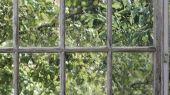 Флизелиновые фотопанно из Швеции коллекция CAPTURED REALITY No 2 от Mr.PERSWALL под названием GREENHOUSE. Окно в зеленый сад. Фотообои для гостиной, панно для спальни, фотопанно для кухни. Купить обои в интернет-магазине Одизайн, бесплатная доставка, онлайн оплата