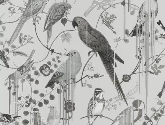 Купить флизелиновые обои от Christian Lacroix  PCL7017/08 с символичным рисунком из экзотических птиц и растений, выполненный в монохроме., Histoires Naturelles, Обои для гостиной, Обои для спальни