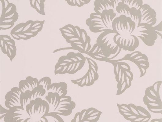 Заказать флизелиновые обои для гостиной, дизайн Berettino арт. PDG1020/05 из коллекции Majolica от Designers guild с курпными цветами на розовом фоне., Majolica, Обои для гостиной, Обои для спальни