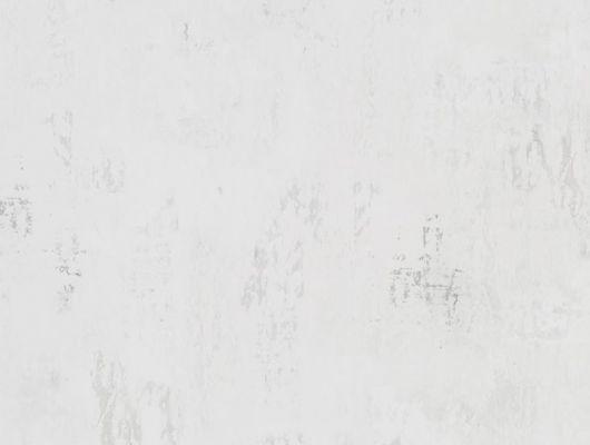 Купить английские флизелиновые обои  Designers guild - Tulipa Stellata.Арт.PDG1034/06.Доставка. Обои в коридор,кухню,спальню, Под бетон.Заказать с доставкой., Tulipa, Обои для кухни