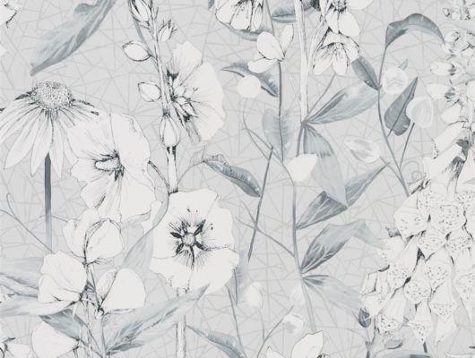 Приобрести дизайнерские обои для прихожей арт. PDG1050/03  из коллекции Mandora от Designers Guild, Великобритания с растительным принтом  белого цвета на сером фоне в салоне обоев Odesign, широкий ассортимент, Mandora, Обои для гостиной, Обои для кухни, Обои для спальни
