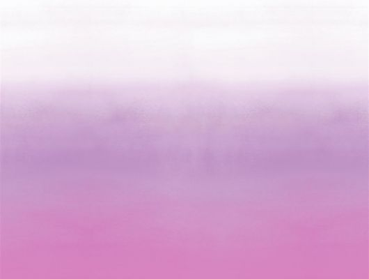 Фотопанно арт. PDG1059/05  из коллекции Mandora от Designers Guild, Великобритания с градиентной растяжкой в фиолетово-розовых оттенках. Заказать в шоу-руме обоев в Москве, онлайн оплата, Mandora, Обои для гостиной, Обои для кухни, Обои для спальни