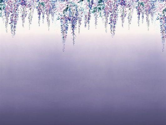 Роскошные фотообои PDG657/02  из коллекции Shanghai Garden от Designers Guild, Великобритания с изображением бордюра с растительным рисунком на фоне с эффектом градиентной растяжки в лавандовых оттенках, приобрести в магазине Одизайн, Shanghai Garden, Обои для гостиной, Обои для кухни