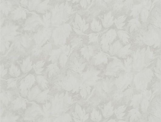 Обои в кабинет арт. PDG679/05 из коллекции Caprifoglio от  Designers guild пр-во Великобритания с растительным узором в бежевом цвете, недорого, Caprifoglio, Обои для гостиной, Обои для кабинета, Обои для кухни, Обои для спальни