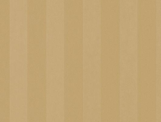 Виниловые обои на бумажной основе напечатаны методом горячего тиснения. Обои металлизированы и имитируют шелковое сияние. Арт.№ 27505 - рисунок классических полос среднего размера в золотом цвете. Обои в Москве, адреса магазинов, каталог обоев, Silks & Textures II, Обои для гостиной, Обои для кабинета