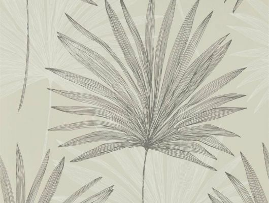 Купить обои в гостиную Mitende арт. 112230 из коллекции Mirador, Harlequin с рисунком из крупных пальмовых листьев на теплом сером фоне в салонах Москвы., Mirador, Обои для гостиной, Обои для спальни