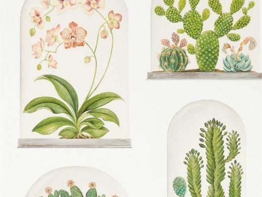 Обои Sanderson коллекция The Glasshouse дизайн Terrariums арт. 216655, The Glasshouse, Обои для гостиной, Обои для спальни, Обои с цветами