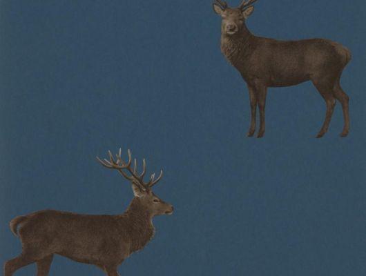 Подобрать необычные обои с животными  для коридора с восхитительным дизайном Evesham Deer арт. 216620 из коллекции Elysian от Sanderson с бесплатной доставкой до дома, Elysian, Обои для гостиной