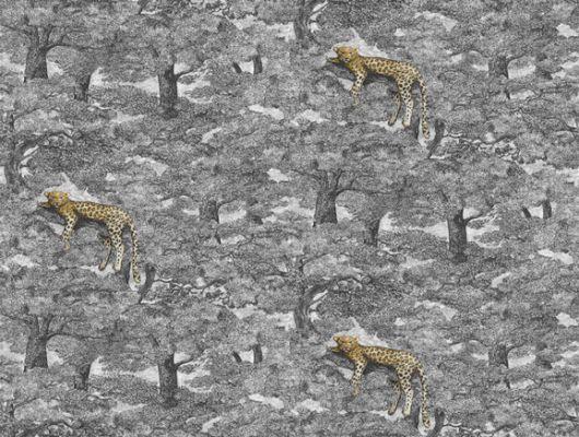 """Фотопанно для дома""""Samburu"""", арт. 1192 изображают желтых леопардов, разлегшихся на черно-серых ветвях в кенийском лесу. Заказать коллекцию Wild Animals от Borastapeter можно в нашем шоу-руме в москве, с оплатой по карте., Wild Animals, Обои для гостиной, Обои для спальни, Фотообои"""