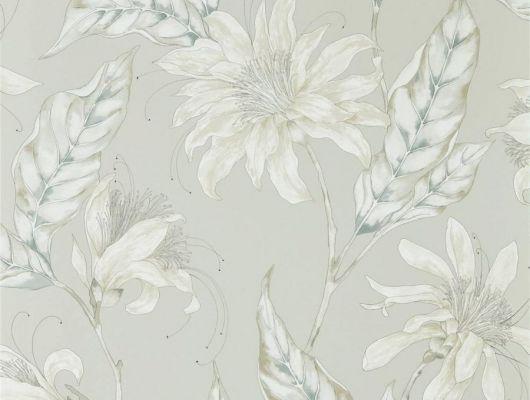 Купить обои для спальни арт. 112255 из коллекции Mirador от Harlequin с крупными цветами на жемчужно-сером фоне в салонах в Москве., Mirador, Обои для гостиной, Обои для спальни