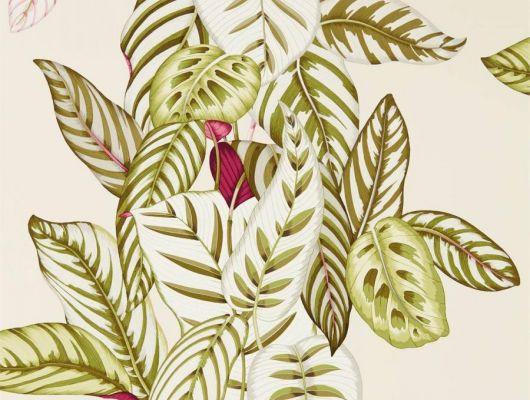 Легкий растительный рисунок в зеленых оттенках на светлом фоне для спальни  дизайн Calathea арт. 216631  коллекция The Glasshouse от Sanderson можно заказать с доставкой до дома, The Glasshouse, Обои для гостиной, Обои для кухни, Обои для спальни, Обои с цветами
