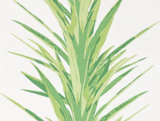 Заказать английские обои для коридора с изображением цветка Юкка  из коллекции The Glasshouse от производителя Sanderson с доставкой по России, The Glasshouse, Обои для гостиной, Обои для кабинета