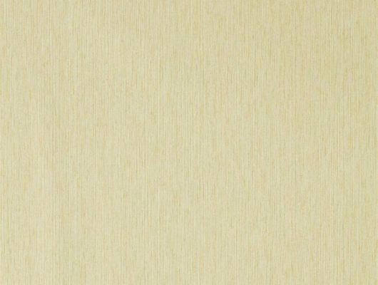%D0%A4%D0%BB%D0%B8%D0%B7%D0%B5%D0%BB%D0%B8%D0%BD%D0%BE%D0%B2%D1%8B%D0%B5+%D0%BE%D0%B4%D0%BD%D0%BE%D1%82%D0%BE%D0%BD%D0%BD%D1%8B%D0%B5+%D0%B1%D0%B5%D0%B6%D0%B5%D0%B2%D1%8B%D0%B5+%D0%BE%D0%B1%D0%BE%D0%B8+%D0%B4%D0%BB%D1%8F+%D1%81%D0%BF%D0%B0%D0%BB%D1%8C%D0%BD%D0%B8+%D0%B0%D1%80%D1%82.+216913%2F216773+%D0%BA%D1%83%D0%BF%D0%B8%D1%82%D1%8C+%D1%81+%D0%B4%D0%BE%D1%81%D1%82%D0%B0%D0%B2%D0%BA%D0%BE%D0%B9., Littlemore, Обои для гостиной, Обои для кабинета, Обои для спальни