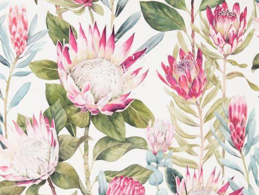 Обои Sanderson коллекция The Glasshouse дизайн King Protea арт. 216646, The Glasshouse, Обои для гостиной, Обои для спальни, Обои с цветами