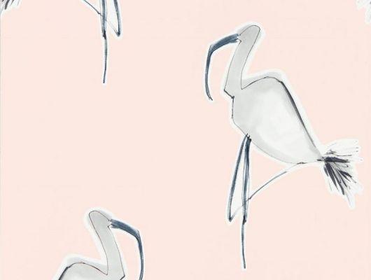 Приобрести обои в гостиную арт. 111999 дизайн Zanzibar из коллекции Zanzibar от Scion, Великобритания с принтом в виде абстрактных фламинго серого цвета на розовом фоне в интернет-магазине Odesign.ru с бесплатной доставкой, онлайн оплата, Zanzibar, Обои для гостиной, Обои для спальни