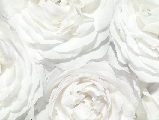 Заказное фотопанно с пышным рисунком в виде белых роз заказать в Москве, What's Your Story, Индивидуальное панно, Фотообои