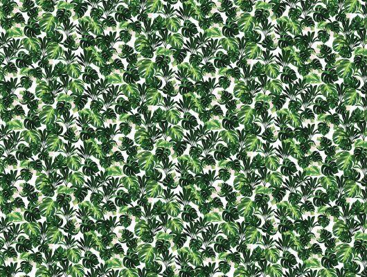 заказное фотопанно с сочной зеленой листвой на белом фоне купить, What's Your Story, Индивидуальное панно, Фотообои