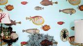 fornasetti-ii-97-10030-acquario