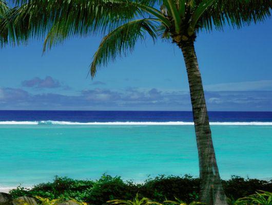 """Фотообои на стену """"Райский вид"""" с видом на голубое море с райского острова полного тенистых пальм и отдыха., Destinations, Обои для гостиной, Фотообои"""