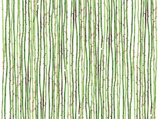 Обои art P191401-5 Флизелин Mr Perswall Швеция, Daily Details, Фотообои