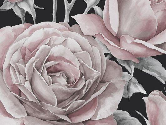 """Фотопанно с благоухающими розами нарисованными акварелью в интернет каталоге """"О дизайн"""", Shades, Дизайнерские обои, Фотообои"""