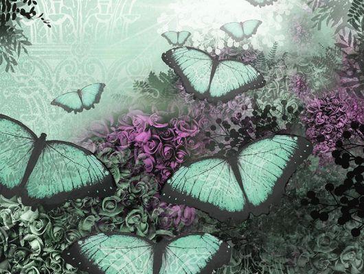 Фотопанно с бабочками зеленого цвета на фоне из множества роз в каталоге интернет магазине O-design, Shades, Фотообои