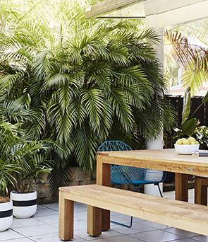 tropical_interior_13